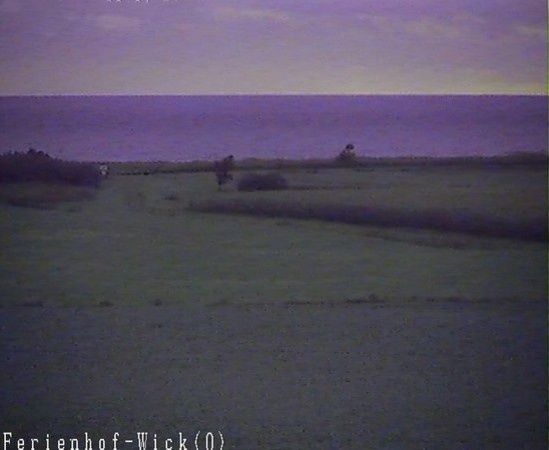 Webcam Weidefelder Strand